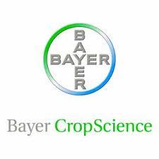 bayer_logo2