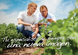 Experts in tomato field_SPA text
